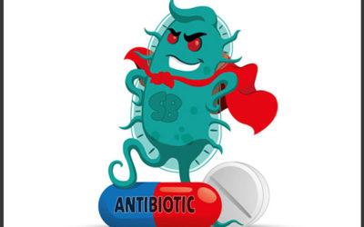 Batteri resistenti agli antibiotici: rischi e consigli